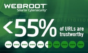 Computer Troubleshooters Toowoomba Webroot Trustworthy